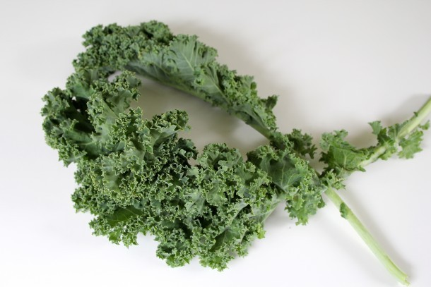 Common, or Curly Kale